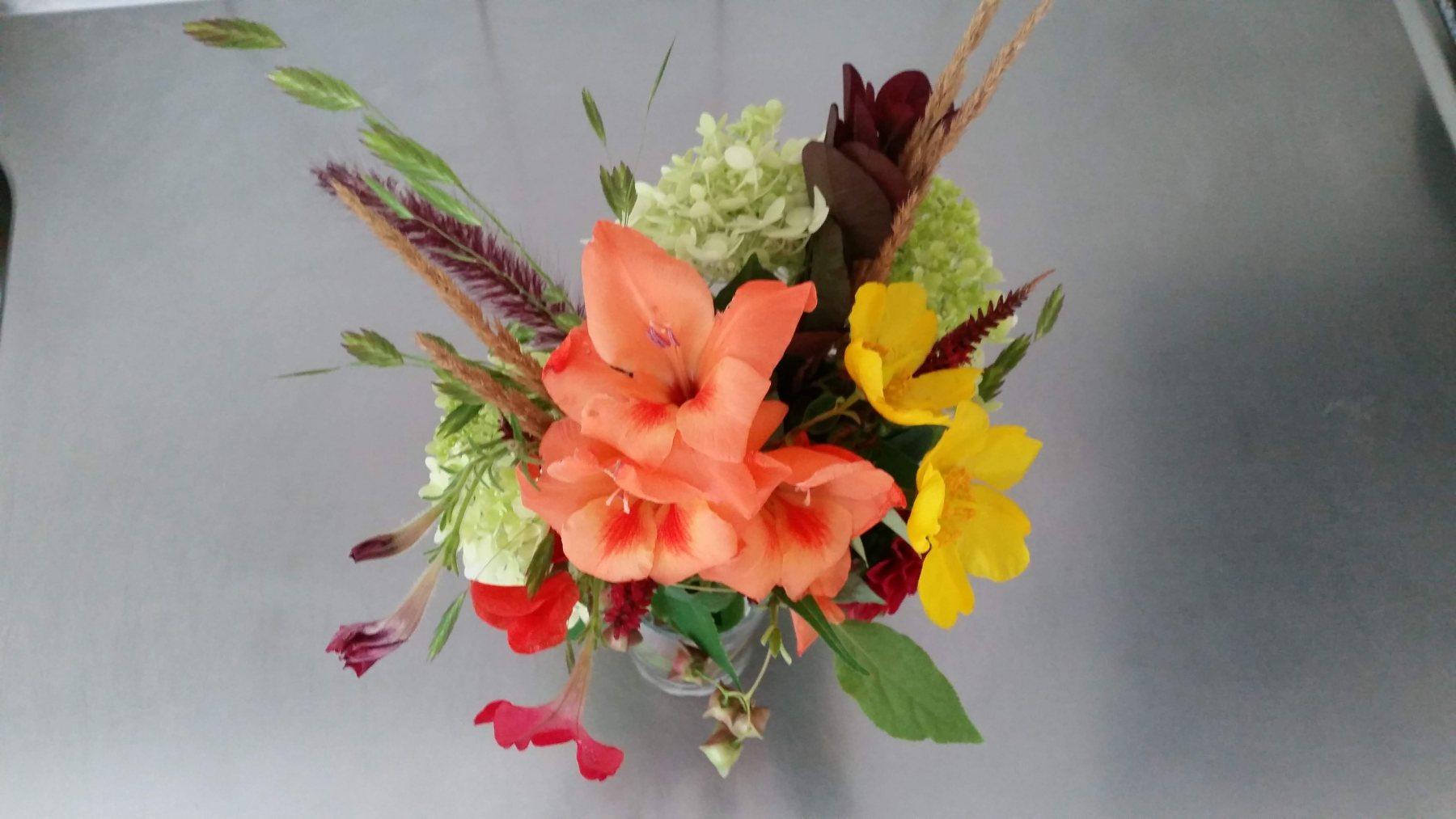 Gladiolus och lite annat