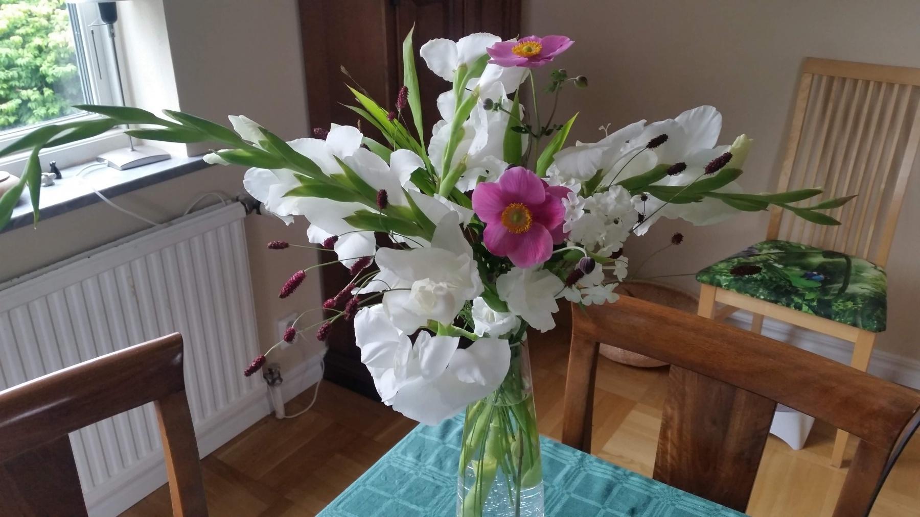 Gladiolus och höstanemon